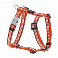 Red Dingo Reflective Orange Large Hundegeschirr