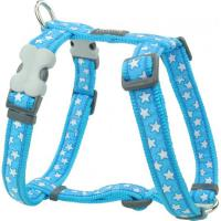 Red Dingo Stars White on Turquoise Medium Hundegeschirr