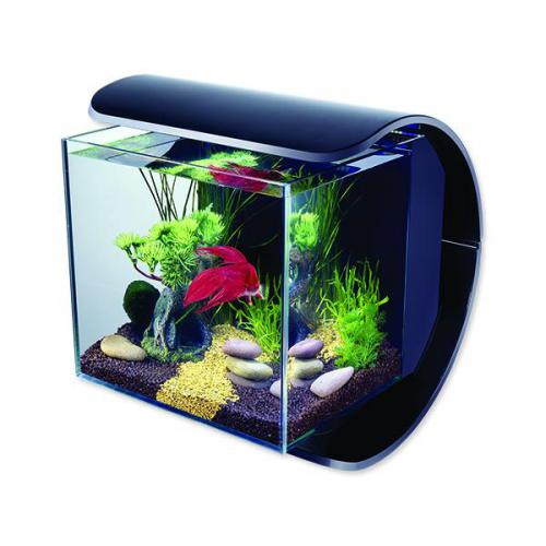 aquarium set tetra silhouette led schwarz 12 l zooshop. Black Bedroom Furniture Sets. Home Design Ideas