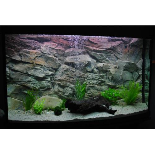 aquarium 3d r ckwand felsen 80 x 40 cm zooshop. Black Bedroom Furniture Sets. Home Design Ideas